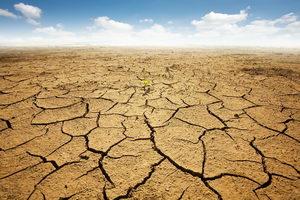 Jak zmiana klimatu wpływa na ekosystemy rolnicze
