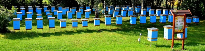 """Projekt PODR w Lubaniu """"Zachowajmy bioróżnorodność wsi pomorskiej"""""""